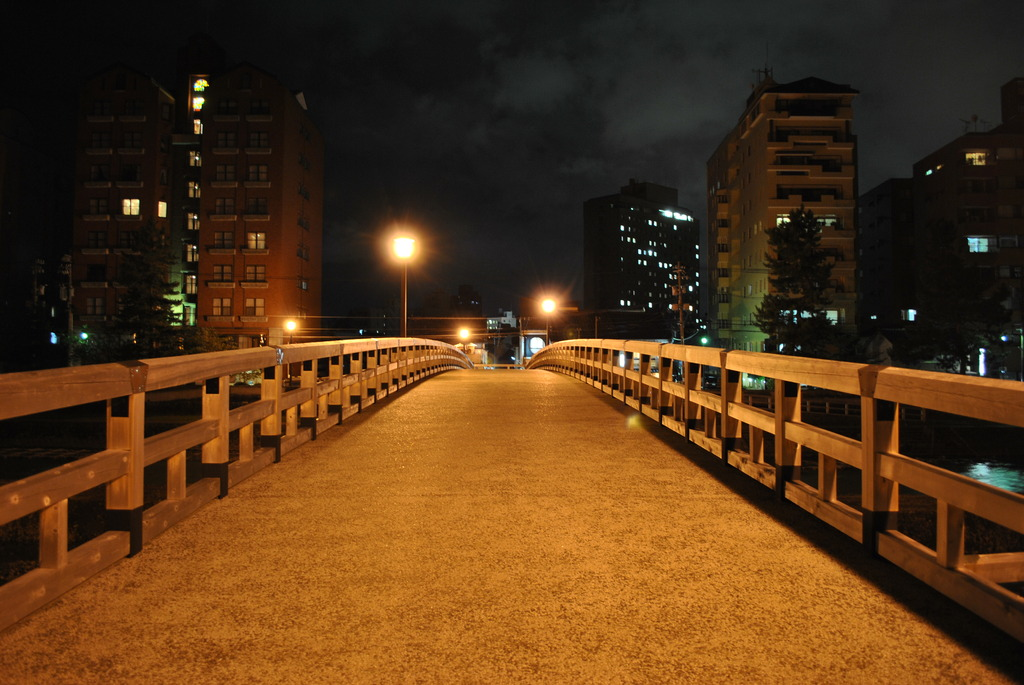 bridge of night