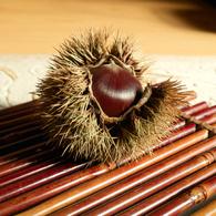 SIGMA SIGMA DP2で撮影した食べ物(秋です)の写真(画像)
