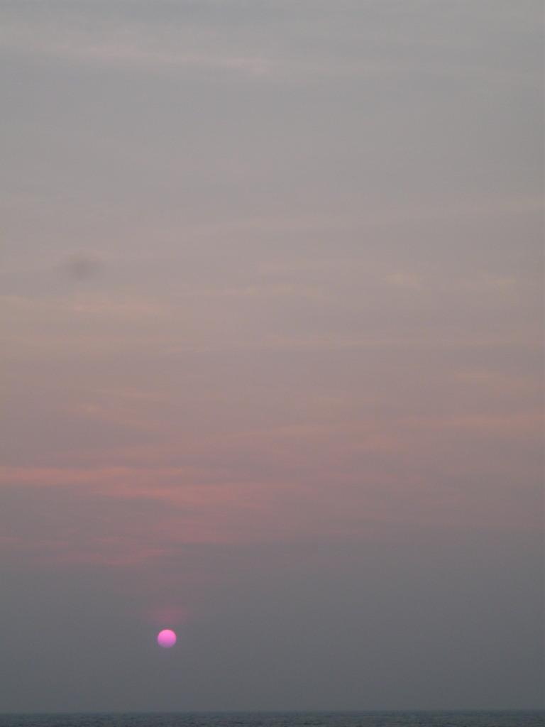 ピンクノシルシ