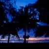 椰子と見る夕焼け