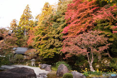 秋色に染まる