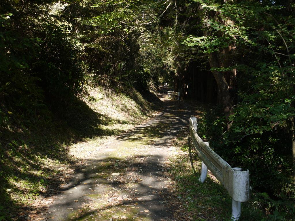 公園に通じる道