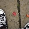 コンバースと紅葉