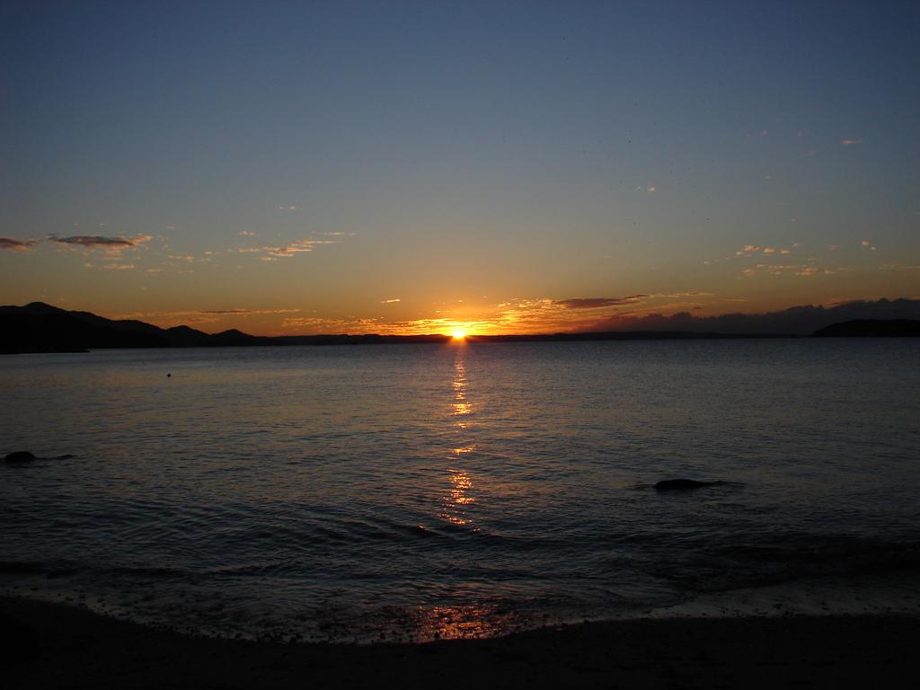 明日への光(DSC01210)