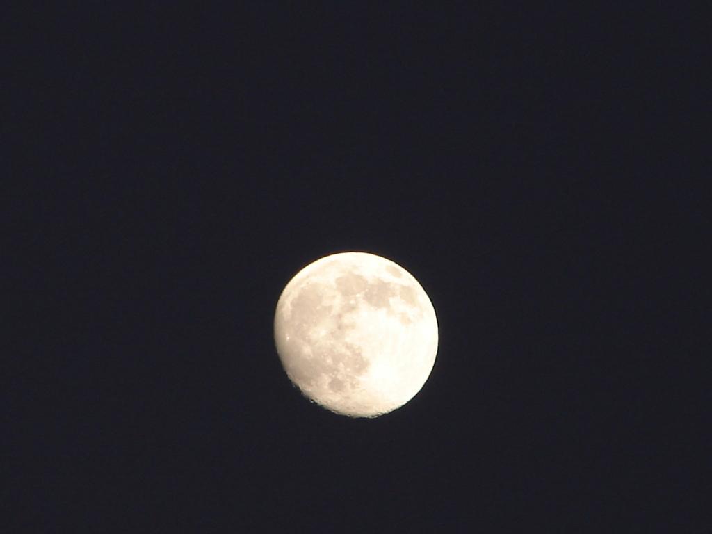 とりあえず・・moon(DSC01250)