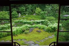 『半夏生の庭』