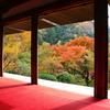 『高山寺 石水院』