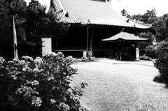 『久米寺』
