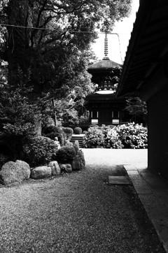 『久米寺にて』
