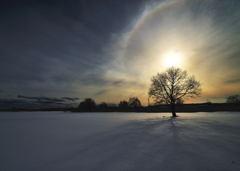 雪原の光輪