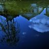 水面の映し絵