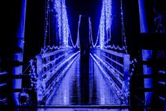 光の吊り橋 その2