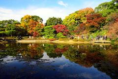 秋晴れの彩を求めて