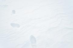 雪中の足跡