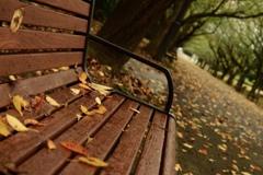 雨の日の公園にて