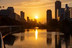 土佐堀川の日の出