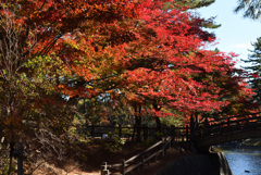 岡崎東公園2