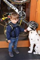 犬と戯れる少年