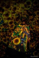 光のアート-向日葵-
