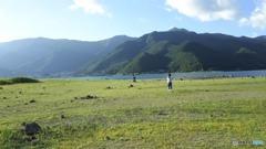 河口湖草原