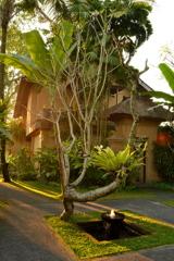 Bali_02 庭に射す陽