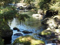 秋の渓谷にて