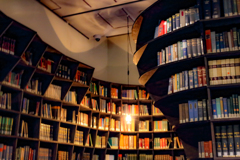 本棚上野の森美術館