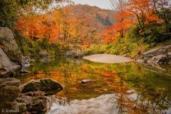 嵐山渓谷と紅葉