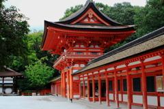 DPP_0064下鴨神社