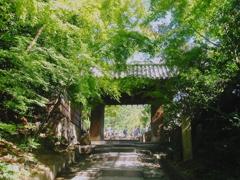 DPP_0250高台寺