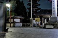真夜中の川崎大師平間寺 門前