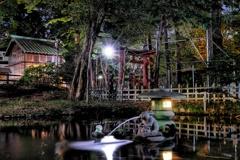 調神社本殿と稲荷社(旧本殿)の間の池にも兎様