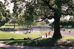 初夏の親水公園