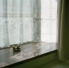 窓辺のクマ