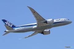 ANA Boeing 787-8 Dreamliner