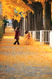 秋の色葉につつまれて^^