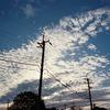9月のうろこ雲