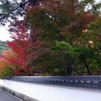RICOH GR DIGITAL 3で撮影した(京都・永観堂の紅葉)の写真(画像)