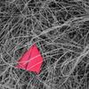 赤い紙飛行機