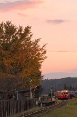夕空と銀杏