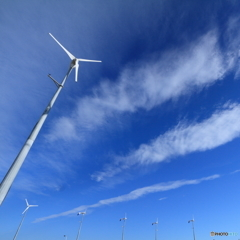ちいさな風車たち