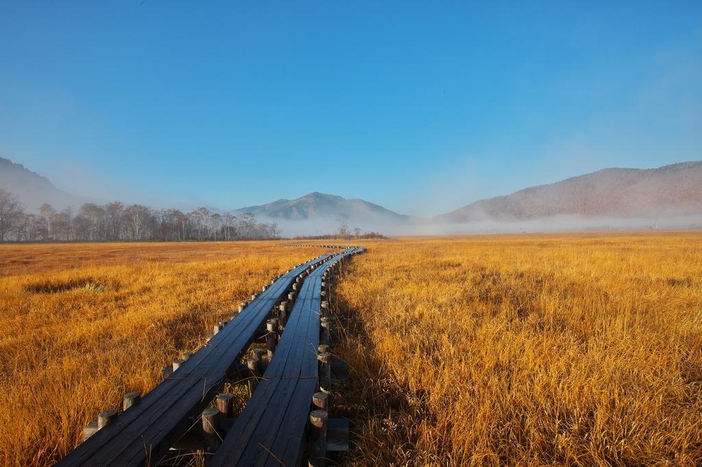 朝霧の尾瀬ヶ原(至仏山に続く木道)