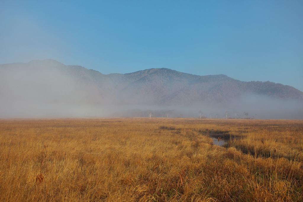朝霧の尾瀬ヶ原(景鶴山)