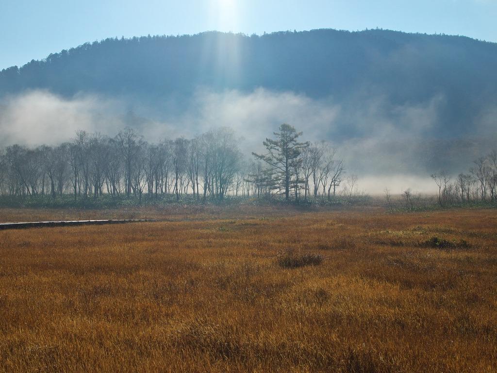 朝霧の尾瀬ヶ原ー朝日に浮かぶ3
