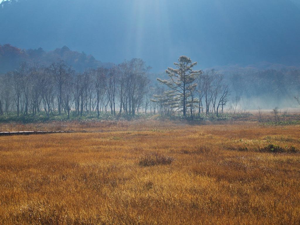 朝霧の尾瀬ヶ原ー朝日に浮かぶ