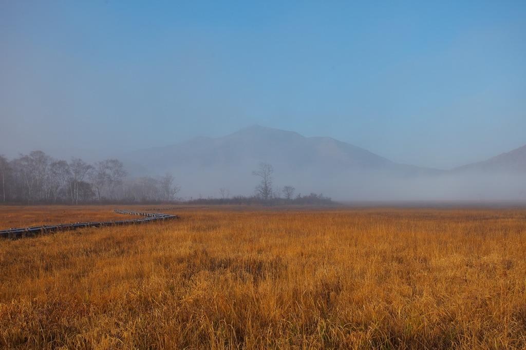朝霧の尾瀬ヶ原(霧に浮かぶ至仏山)