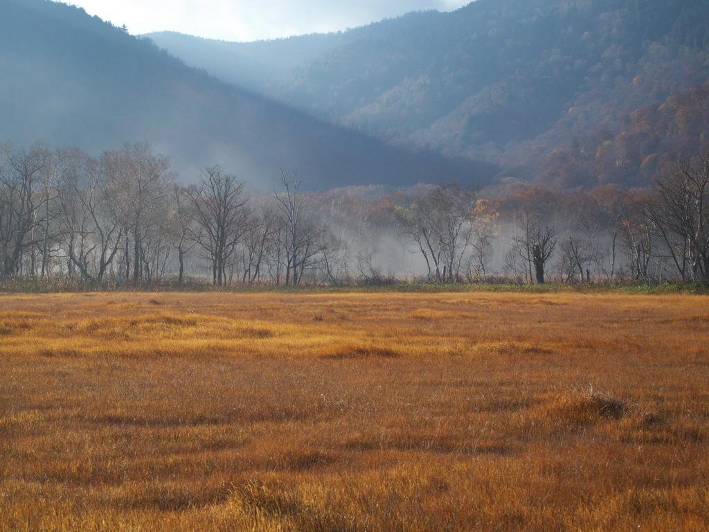 朝霧の尾瀬ヶ原ー残霧