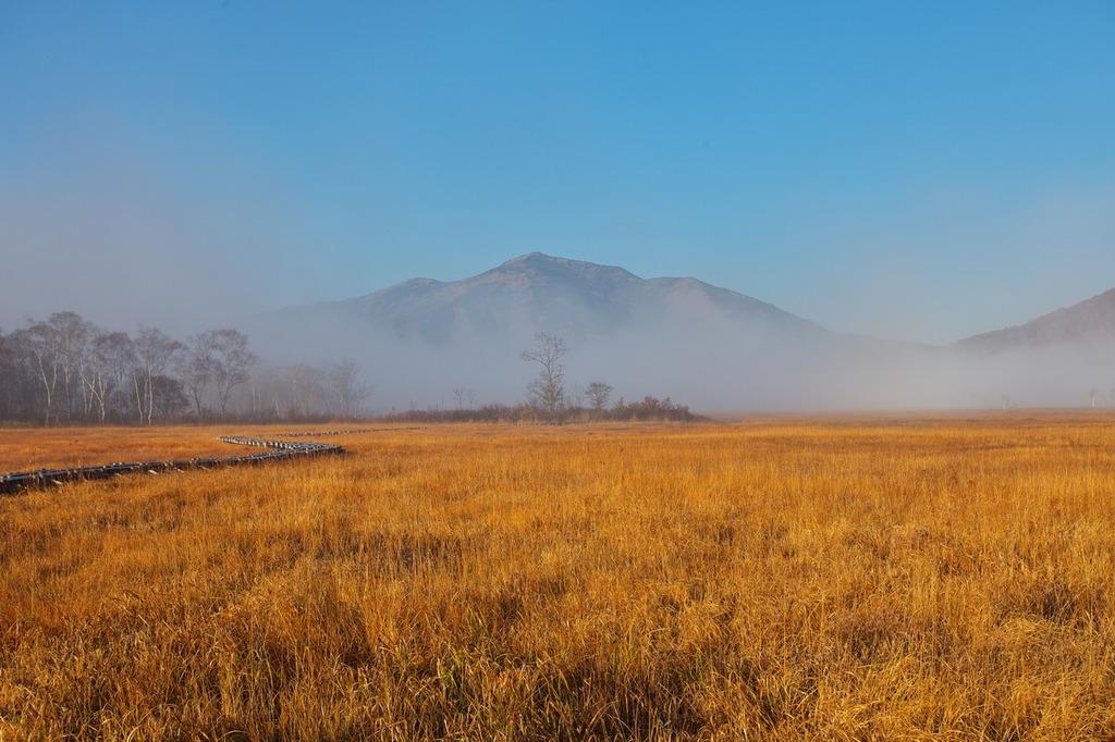朝霧の尾瀬ヶ原(霧に浮かぶ至仏山2)