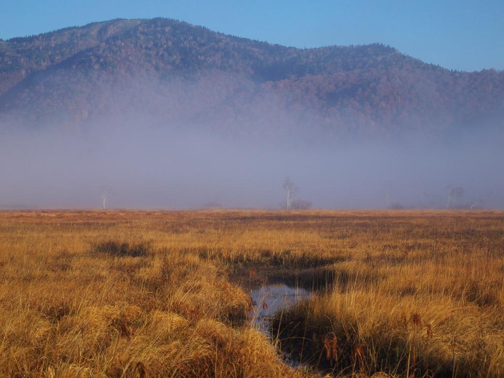 朝霧の尾瀬ヶ原ー景鶴山