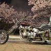 桜並木と激烈魔怪造バイク